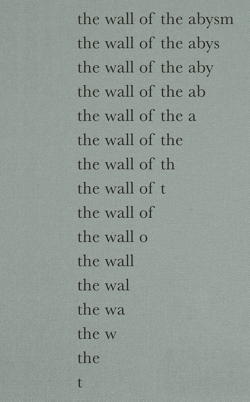 The Wall Of The Abysm / La Pared Del Abismo. Nuria Fuster