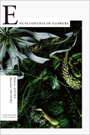 Encyclopedia of Flowers – Flower Works by Makoto Azuma Photographed by Shunsuke Shiinoki
