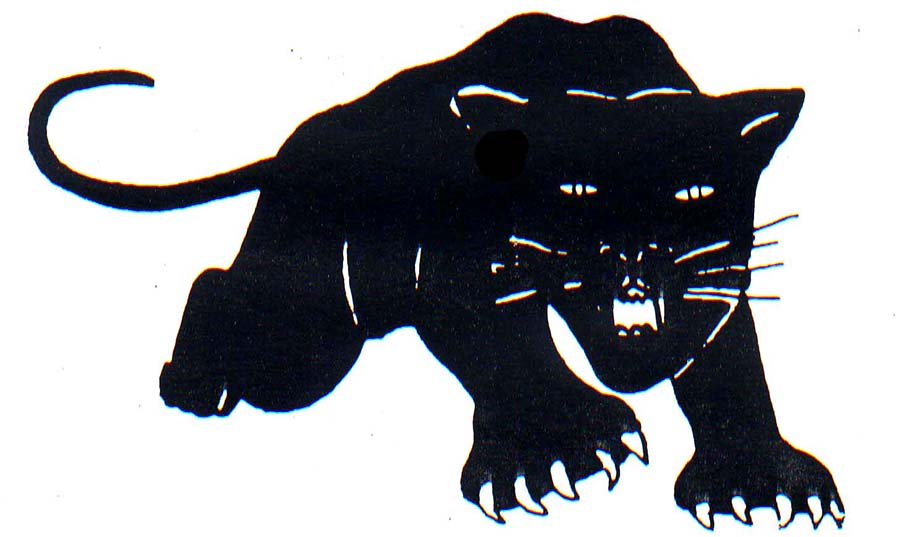The Women Behind The Black Panther Party Logo Design Observer
