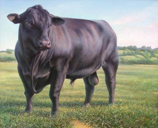 raging bull essays Films film cinematography - evaluation of three scenes in raging bull | 1010831.