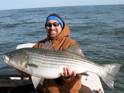 The b corp designation ensures that companies adhere to for Chesapeake bay fish