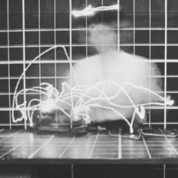 Exposure: Motion efficiency study, photographed by Frank ...