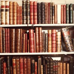 The Observatory Episode 100: Loving Librarians